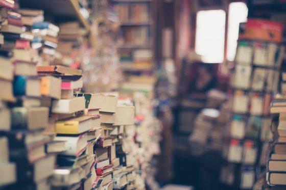 Los libros son importantes recursos didácticos