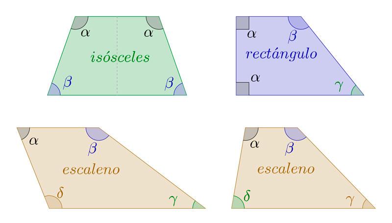Clasificación de los trapecios, isósceles, rectángulo y escaleno