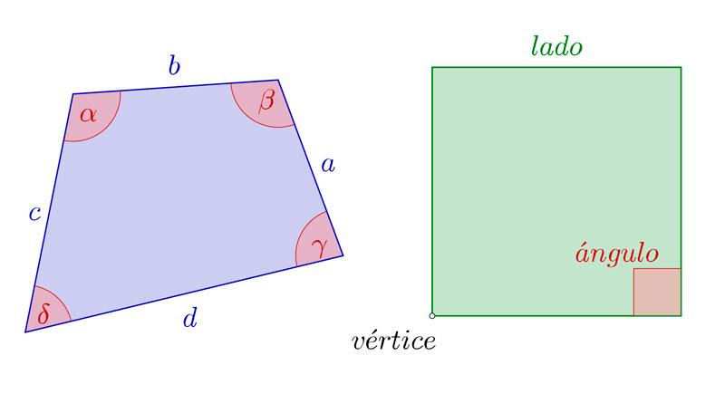 Cuadriláteros, cuadrados y sus partes
