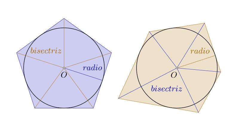 Polígonos circunscritos, regulares e irregulares